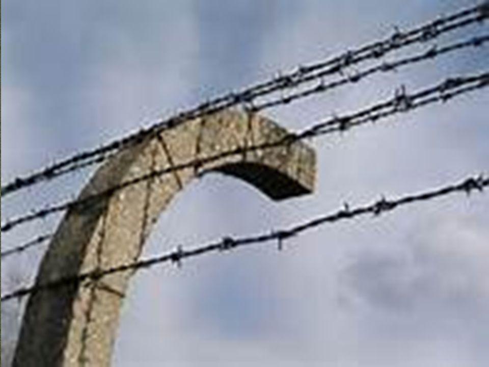 I nazisti parlarono di «soluzione finale».