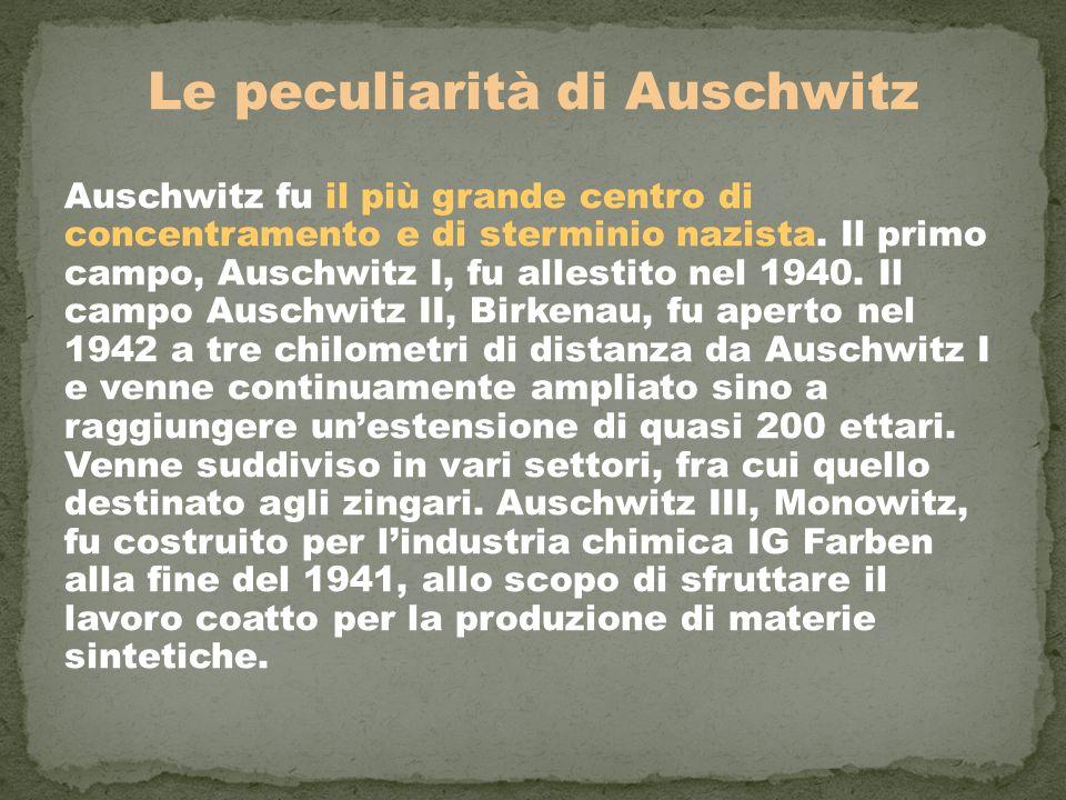 Le peculiarità di Auschwitz Auschwitz fu il più grande centro di concentramento e di sterminio nazista. Il primo campo, Auschwitz I, fu allestito nel