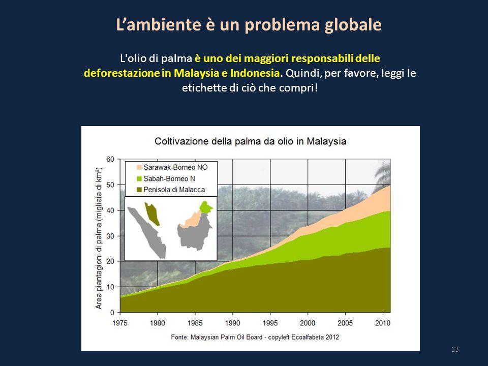 13 L'ambiente è un problema globale è uno dei maggiori responsabili delle deforestazione in Malaysia e Indonesia L olio di palma è uno dei maggiori responsabili delle deforestazione in Malaysia e Indonesia.