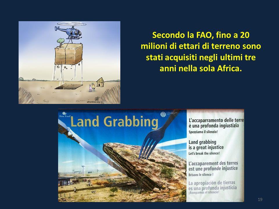 19 Secondo la FAO, fino a 20 milioni di ettari di terreno sono stati acquisiti negli ultimi tre anni nella sola Africa.