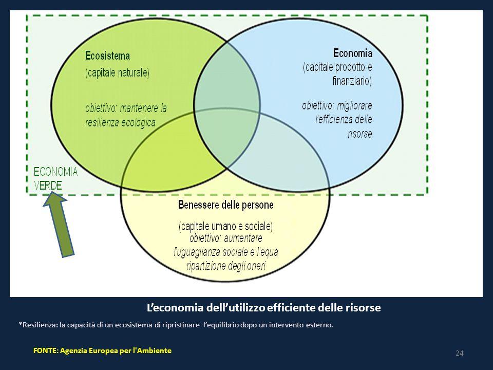 24 FONTE: Agenzia Europea per l Ambiente L'economia dell'utilizzo efficiente delle risorse *Resilienza: la capacità di un ecosistema di ripristinare l'equilibrio dopo un intervento esterno.