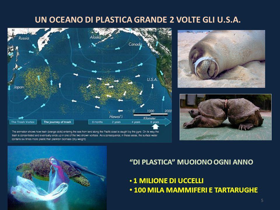 UN OCEANO DI PLASTICA GRANDE 2 VOLTE GLI U.S.A.