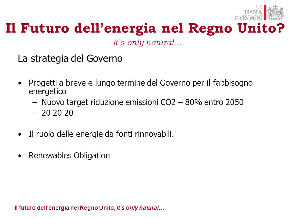 Il futuro dell'energia nel Regno Unito, it's only natural… Il Futuro dell'energia nel Regno Unito? It's only natural… La strategia del Governo Progett