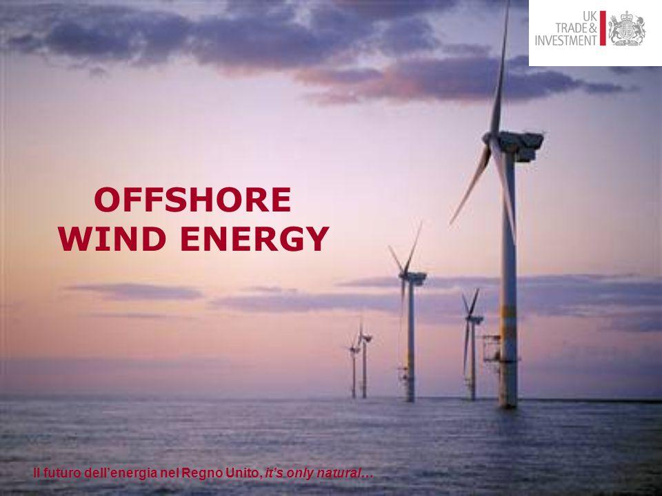Il futuro dell'energia nel Regno Unito, it's only natural… Marine Energy Accelerator Il Futuro dell'energia nel Regno Unito.