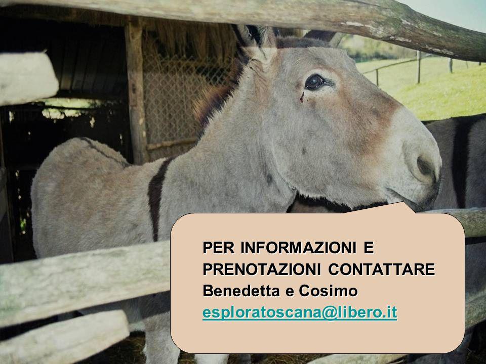 PER INFORMAZIONI E PRENOTAZIONI CONTATTARE Benedetta e Cosimo esploratoscana@libero.it