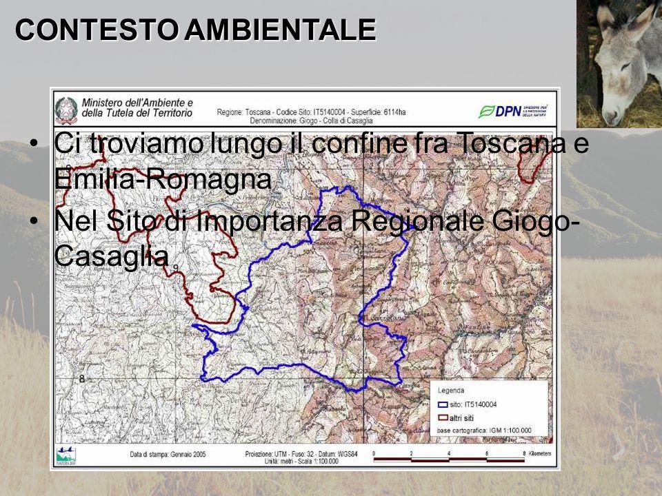 CONTESTO AMBIENTALE Ci troviamo lungo il confine fra Toscana e Emilia-Romagna Nel Sito di Importanza Regionale Giogo- Casaglia