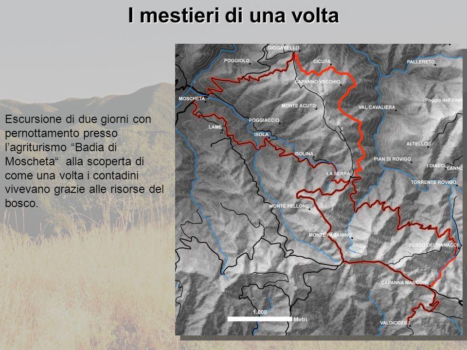 I mestieri di una volta Escursione di due giorni con pernottamento presso l'agriturismo Badia di Moscheta alla scoperta di come una volta i contadini vivevano grazie alle risorse del bosco.