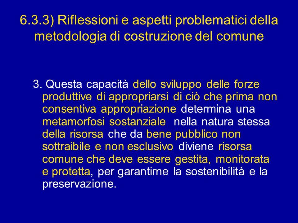 6.3.3) Riflessioni e aspetti problematici della metodologia di costruzione del comune 3.