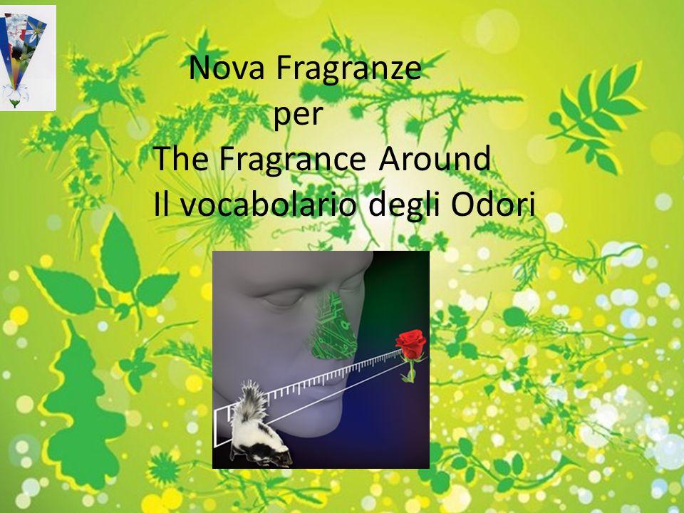 By Massimo Novati, senior perfumer Nova Fragranze srl Fragranze e profumi per 07 NOVEMBRE 2012 Novafragranze per Pettenon Cosmetics Nova Fragranze per
