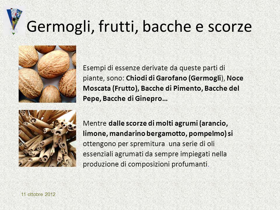 Germogli, frutti, bacche e scorze Esempi di essenze derivate da queste parti di piante, sono: Chiodi di Garofano (Germogli), Noce Moscata (Frutto), Ba