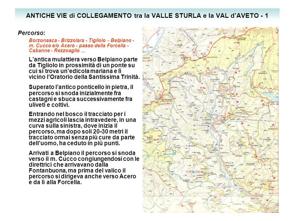 ANTICHE VIE di COLLEGAMENTO tra la VALLE STURLA e la VAL d'AVETO - 1 Percorso: Borzonasca - Brizzolara - Tigliolo - Belpiano - m.