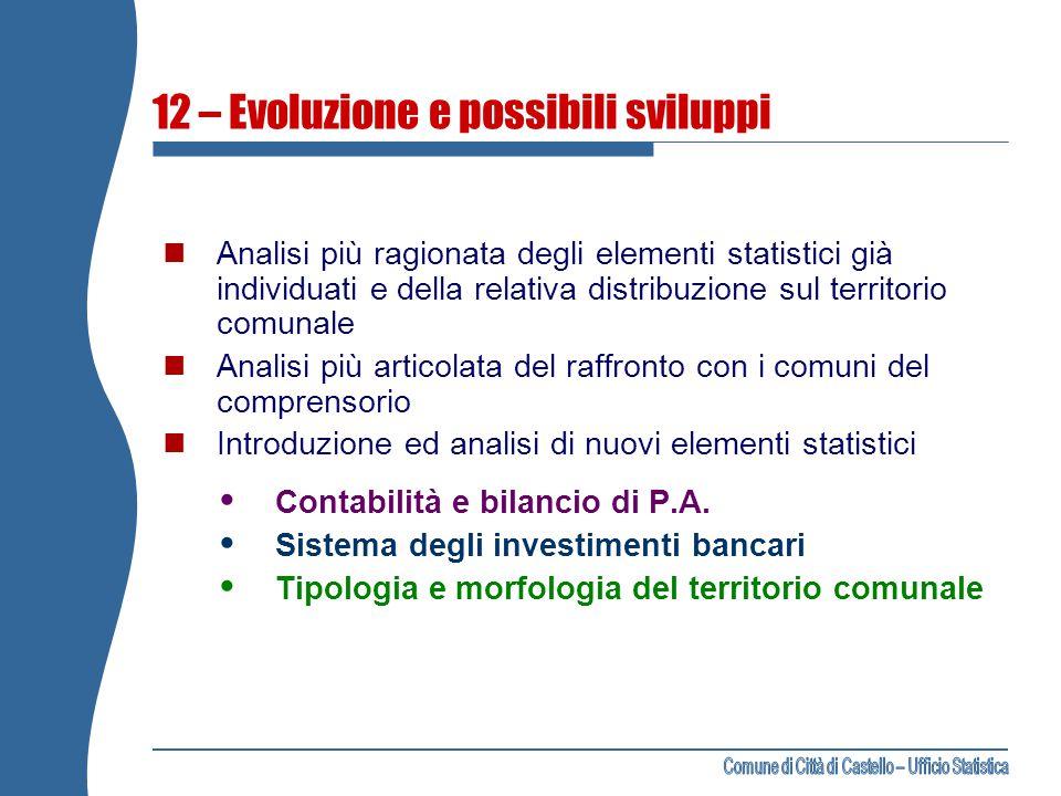 12 – Evoluzione e possibili sviluppi Analisi più ragionata degli elementi statistici già individuati e della relativa distribuzione sul territorio com