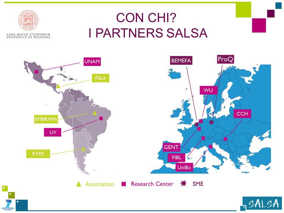 CON CHI I PARTNERS SALSA