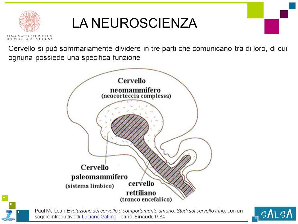 LA NEUROSCIENZA Cervello si può sommariamente dividere in tre parti che comunicano tra di loro, di cui ognuna possiede una specifica funzione Paul Mc Lean:Evoluzione del cervello e comportamento umano.