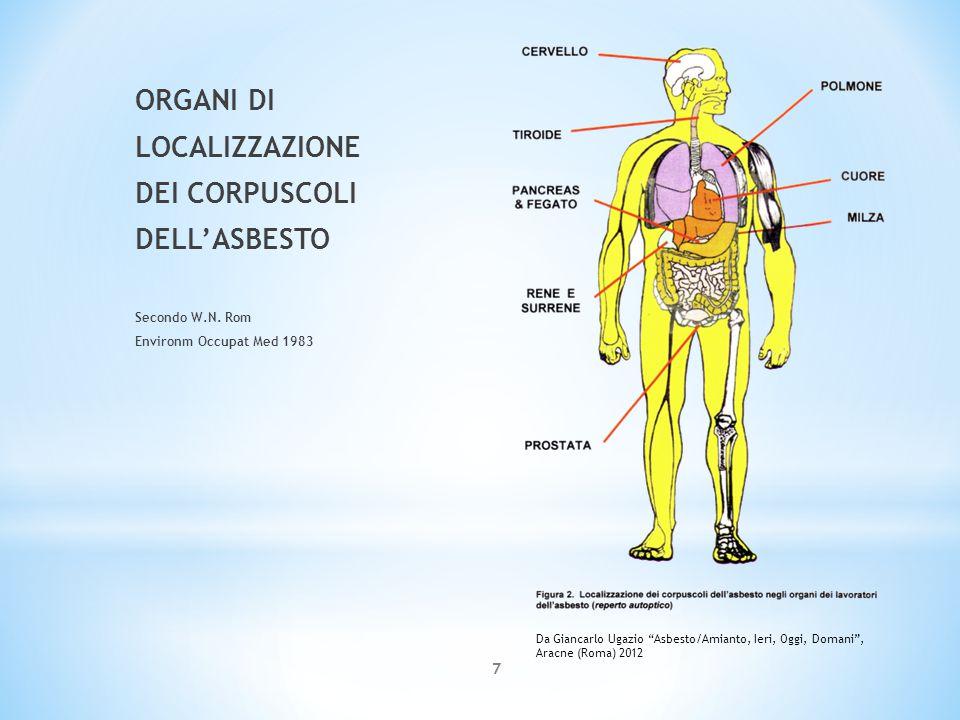 VIE DI INGRESSO DELL'ASBESTO NELL'ORGANISMO 8