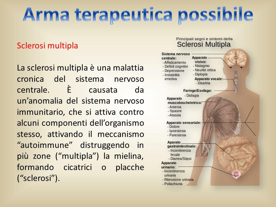 SMA L'atrofia muscolare spinale è una malattia delle cellule nervose delle corna anteriori del midollo spinale.