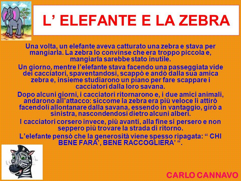L' ELEFANTE E LA ZEBRA Una volta, un elefante aveva catturato una zebra e stava per mangiarla. La zebra lo convinse che era troppo piccola e, mangiarl