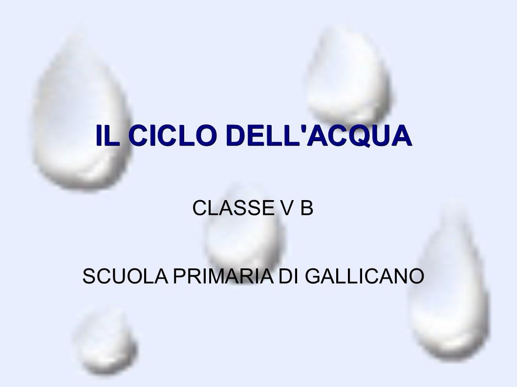 IL CICLO DELL'ACQUA CLASSE V B SCUOLA PRIMARIA DI GALLICANO