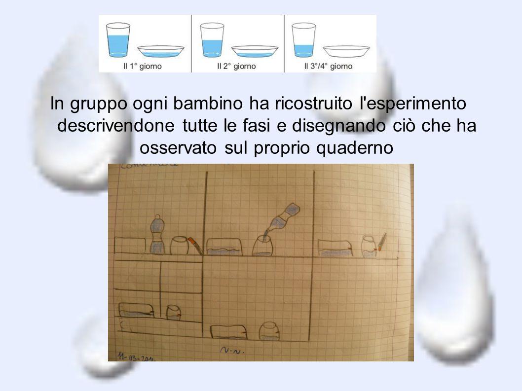 In gruppo ogni bambino ha ricostruito l'esperimento descrivendone tutte le fasi e disegnando ciò che ha osservato sul proprio quaderno