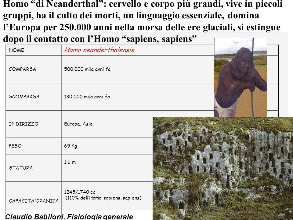 Claudio Babiloni, Fisiologia generale NOME Homo neanderthalensis COMPARSA500.000 mila anni fa SCOMPARSA130.000 mila anni fa INDIRIZZOEuropa, Asia PESO