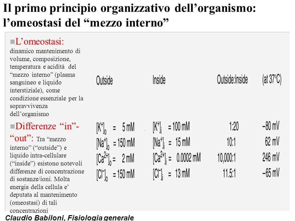 """Claudio Babiloni, Fisiologia generale Il primo principio organizzativo dell'organismo: l'omeostasi del """"mezzo interno"""" n L'omeostasi: dinamico manteni"""