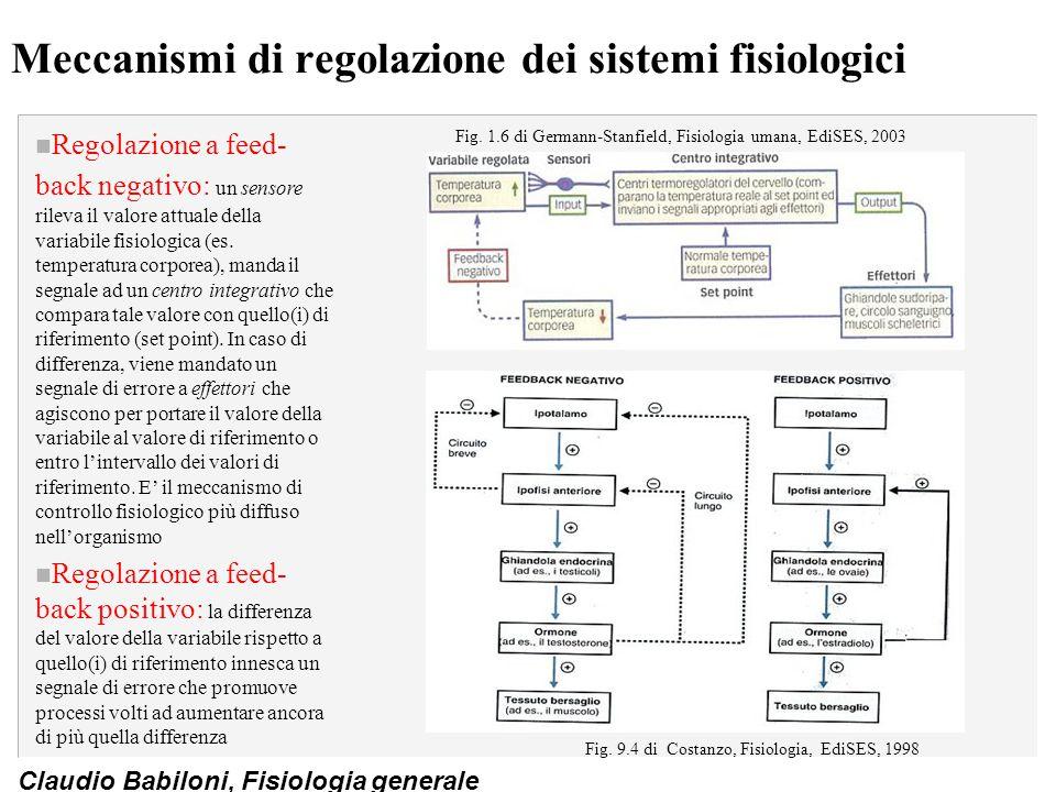Claudio Babiloni, Fisiologia generale Meccanismi di regolazione dei sistemi fisiologici n Regolazione a feed- back negativo: un sensore rileva il valo