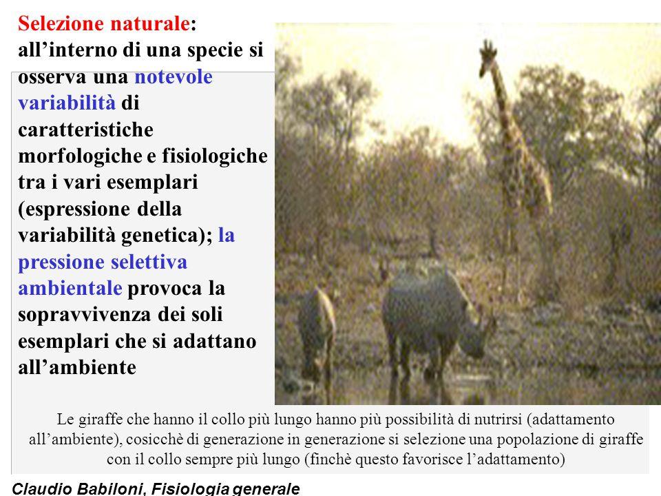 Claudio Babiloni, Fisiologia generale Selezione naturale: all'interno di una specie si osserva una notevole variabilità di caratteristiche morfologich
