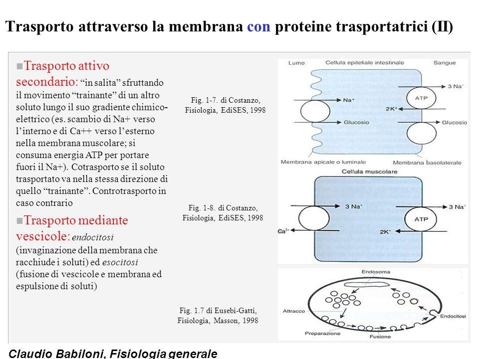 """Claudio Babiloni, Fisiologia generale Trasporto attraverso la membrana con proteine trasportatrici (II) n Trasporto attivo secondario: """"in salita"""" sfr"""