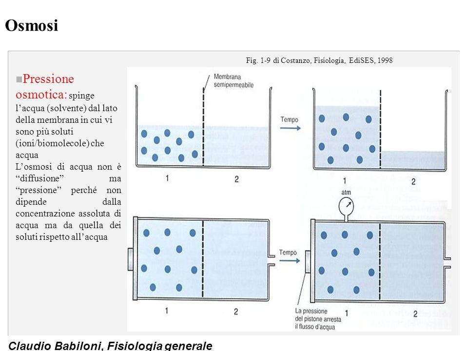 Claudio Babiloni, Fisiologia generale Osmosi n Pressione osmotica: spinge l'acqua (solvente) dal lato della membrana in cui vi sono più soluti (ioni/b