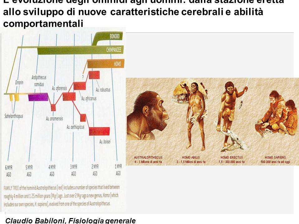 Claudio Babiloni, Fisiologia generale L'evoluzione degli ominidi agli uomini: dalla stazione eretta allo sviluppo di nuove caratteristiche cerebrali e