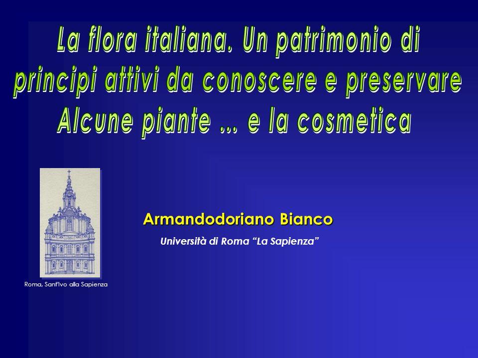 Armandodoriano Bianco Roma, Sant Ivo alla Sapienza Università di Roma La Sapienza