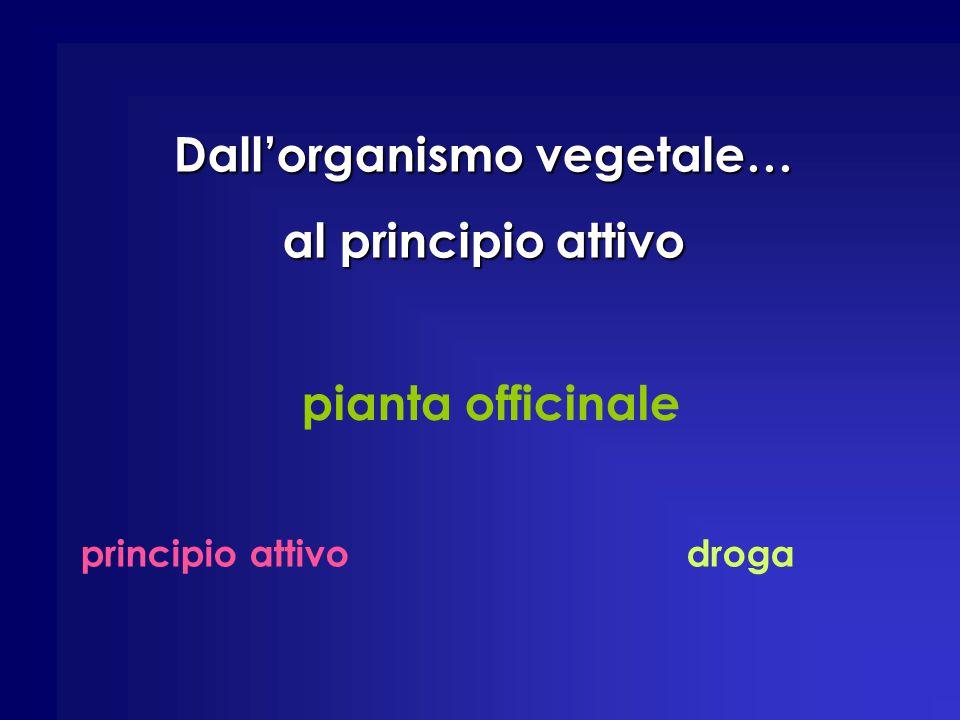 pianta officinale principio attivodroga Dall'organismo vegetale… al principio attivo