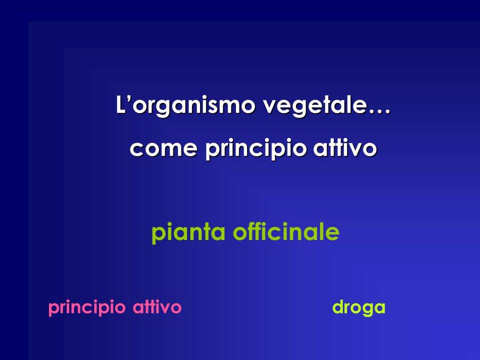pianta officinale principio attivodroga L'organismo vegetale… come principio attivo