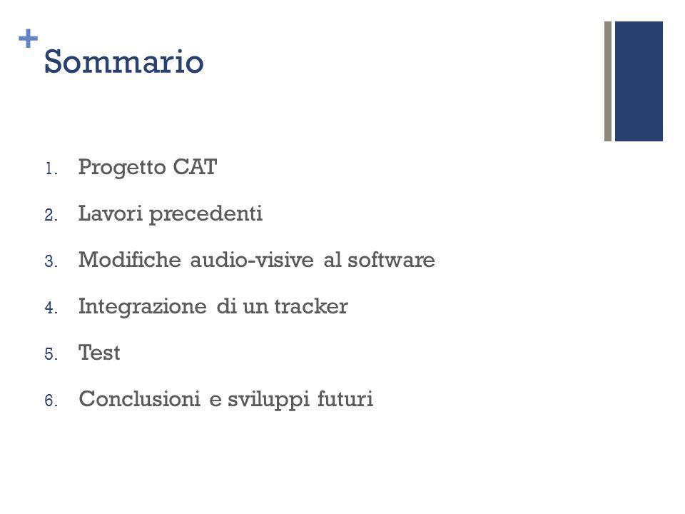 + Sommario 1. Progetto CAT 2. Lavori precedenti 3. Modifiche audio-visive al software 4. Integrazione di un tracker 5. Test 6. Conclusioni e sviluppi
