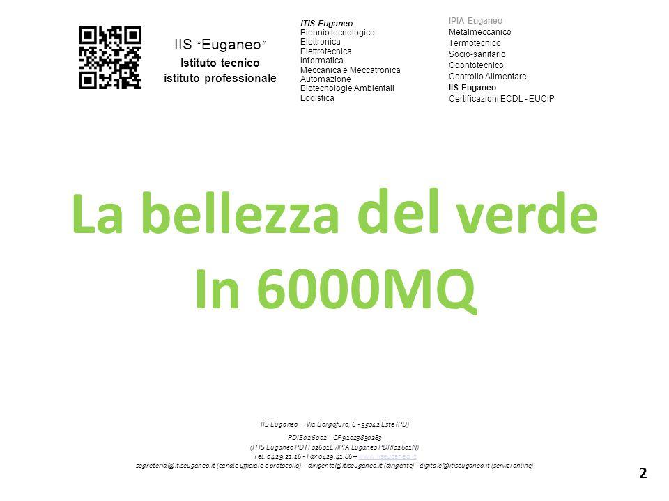 """IIS """" Euganeo """" Istituto tecnico istituto professionale ITIS Euganeo Biennio tecnologico Elettronica Elettrotecnica Informatica Meccanica e Meccatroni"""