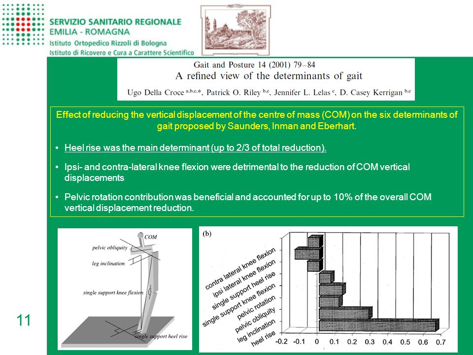 11 Effect of reducing the vertical displacement of the centre of mass (COM) on the six determinants of gait proposed by Saunders, Inman and Eberhart.