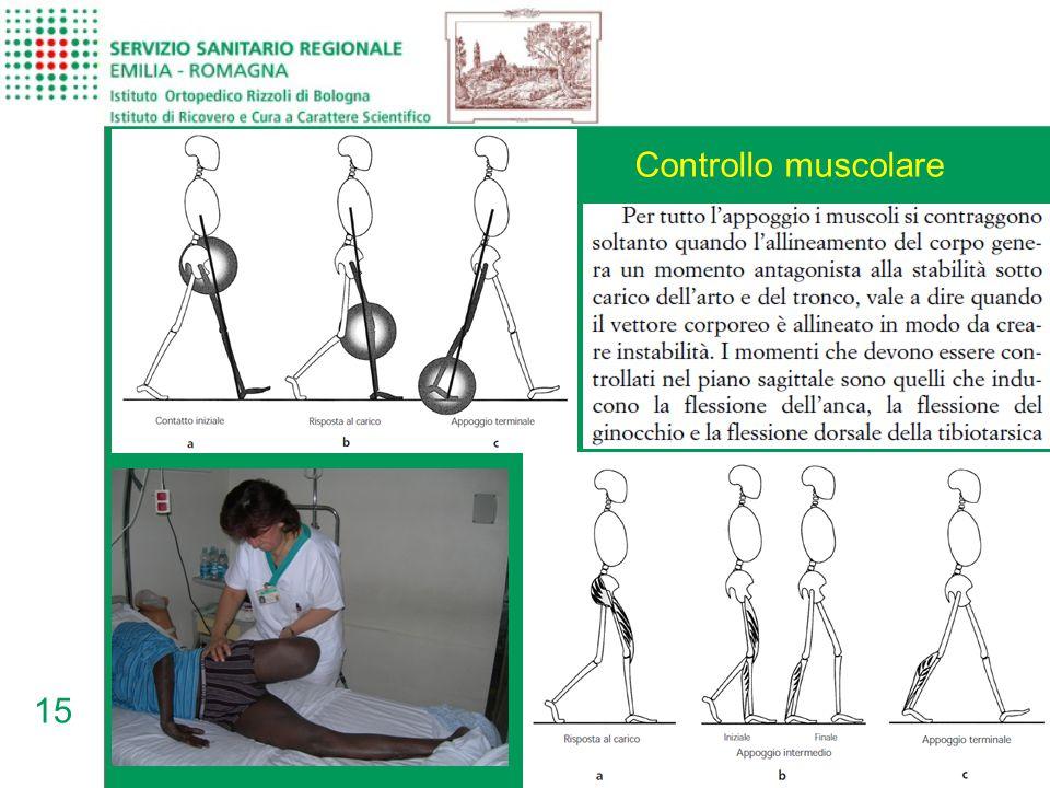 15 Controllo muscolare
