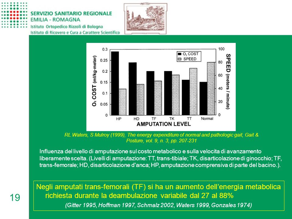 19 RL Waters, S Mulroy (1999), The energy expenditure of normal and pathologic gait, Gait & Posture, vol. 9, n. 3, pp. 207-231 Influenza del livello d