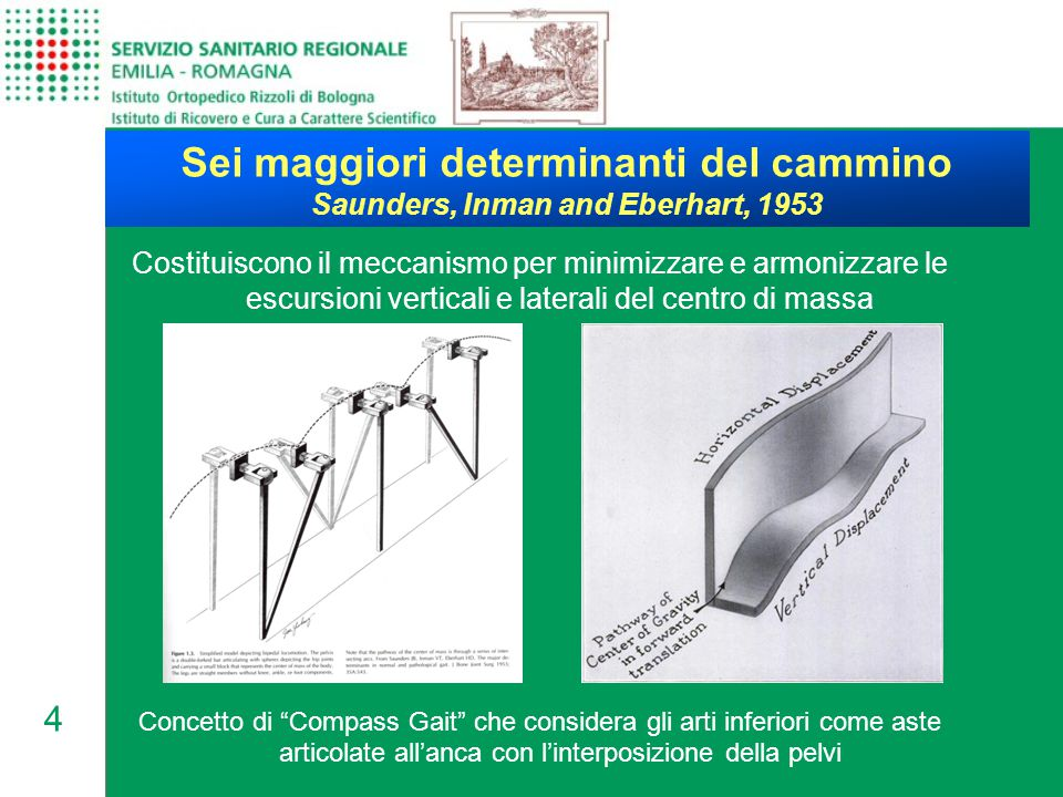 4 Sei maggiori determinanti del cammino Saunders, Inman and Eberhart, 1953 Costituiscono il meccanismo per minimizzare e armonizzare le escursioni ver