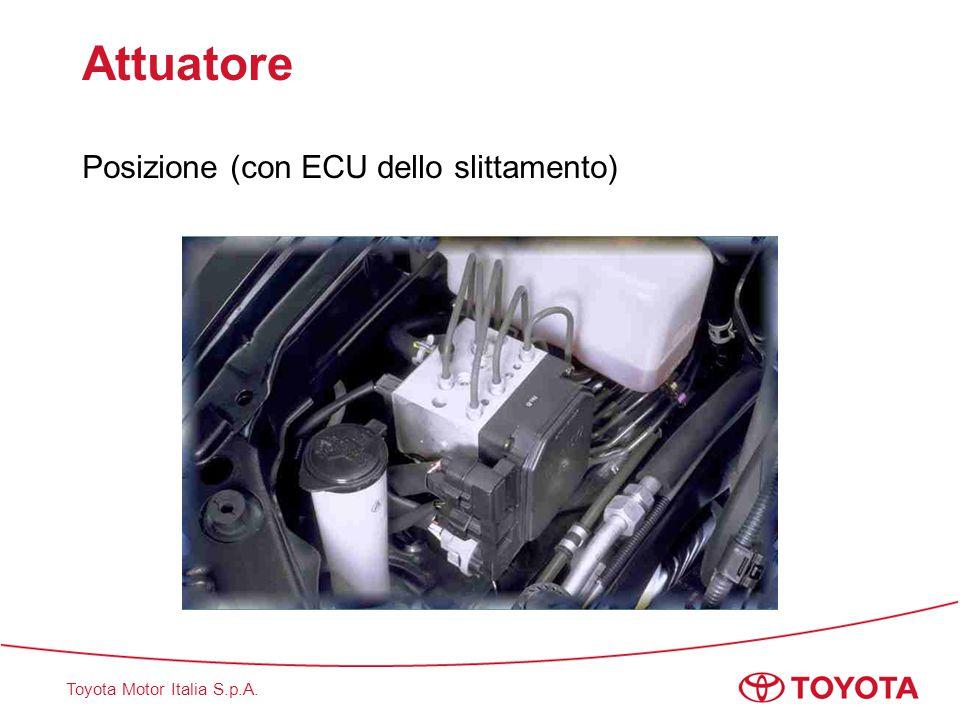 Toyota Motor Italia S.p.A. Attuatore Posizione (con ECU dello slittamento)