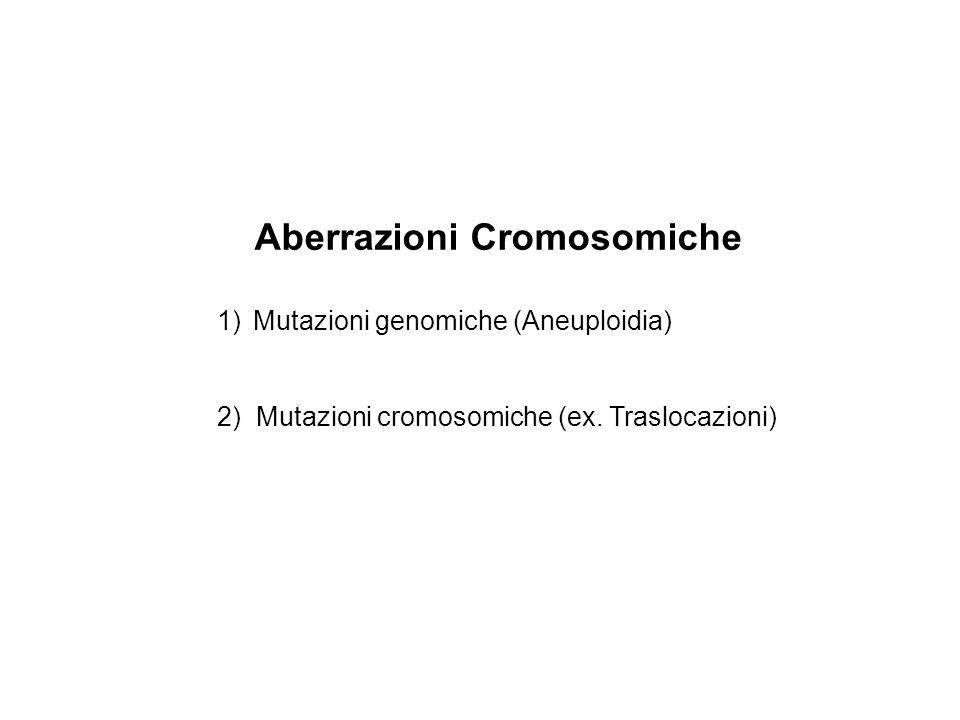 Aberrazioni Cromosomiche 1)Mutazioni genomiche (Aneuploidia) 2) Mutazioni cromosomiche (ex. Traslocazioni)