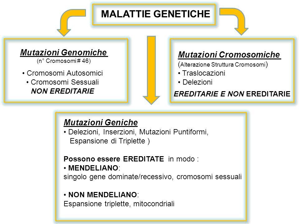 Mutazioni Genomiche (n° Cromosomi # 46) Cromosomi Autosomici Cromosomi Sessuali NON EREDITARIE Mutazioni Cromosomiche ( Alterazione Struttura Cromosom