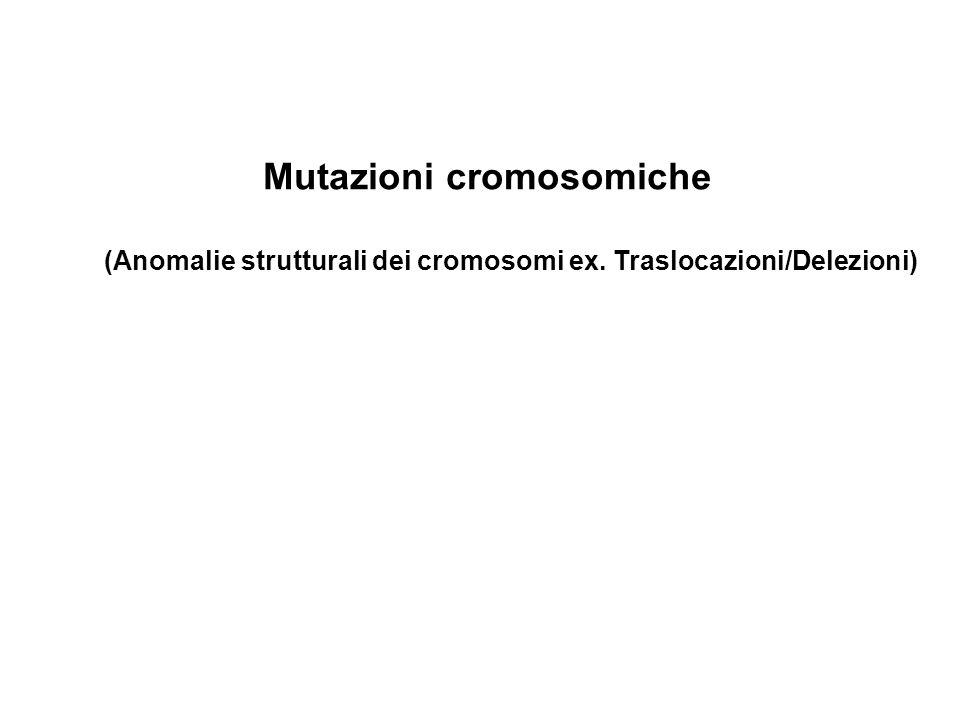 (Anomalie strutturali dei cromosomi ex. Traslocazioni/Delezioni) Mutazioni cromosomiche