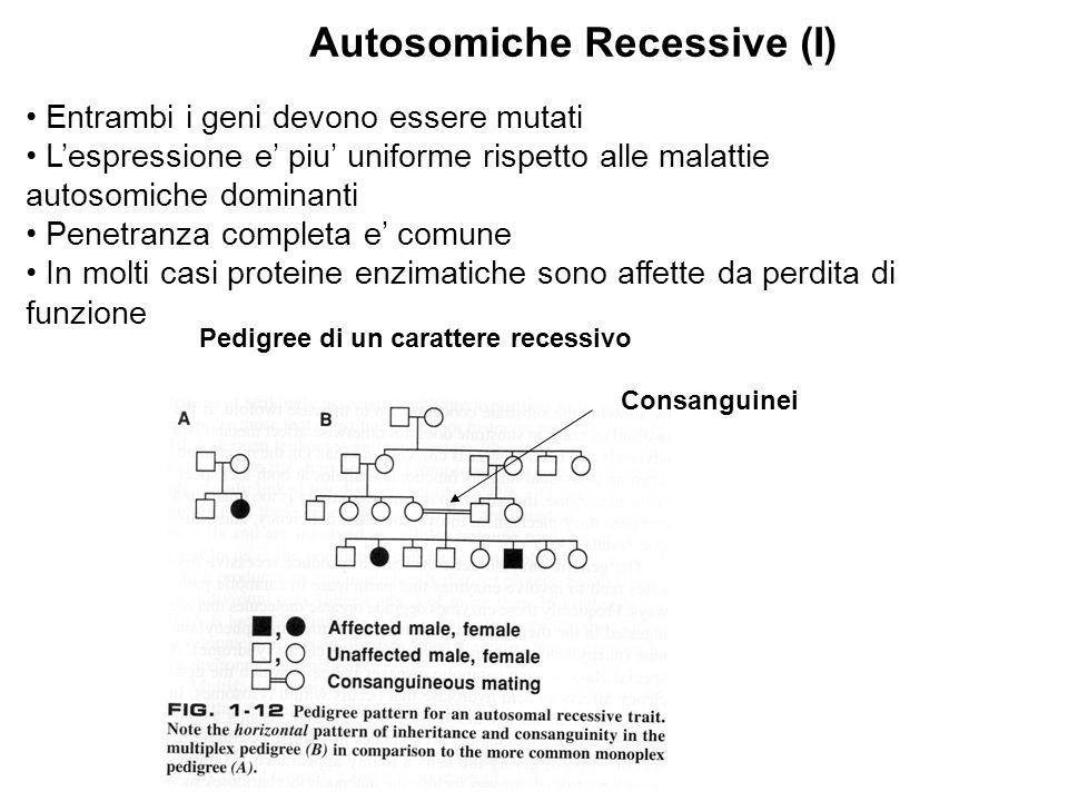 Entrambi i geni devono essere mutati L'espressione e' piu' uniforme rispetto alle malattie autosomiche dominanti Penetranza completa e' comune In molt