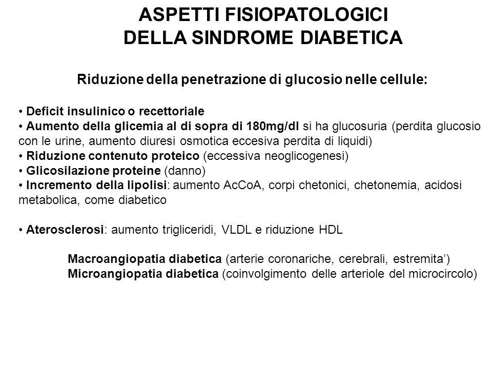 ASPETTI FISIOPATOLOGICI DELLA SINDROME DIABETICA Riduzione della penetrazione di glucosio nelle cellule: Deficit insulinico o recettoriale Aumento del