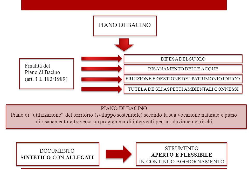 PIANO DI BACINO Finalità del Piano di Bacino (art. 1 L 183/1989) DIFESA DEL SUOLO RISANAMENTO DELLE ACQUE FRUIZIONE E GESTIONE DEL PATRIMONIO IDRICO T