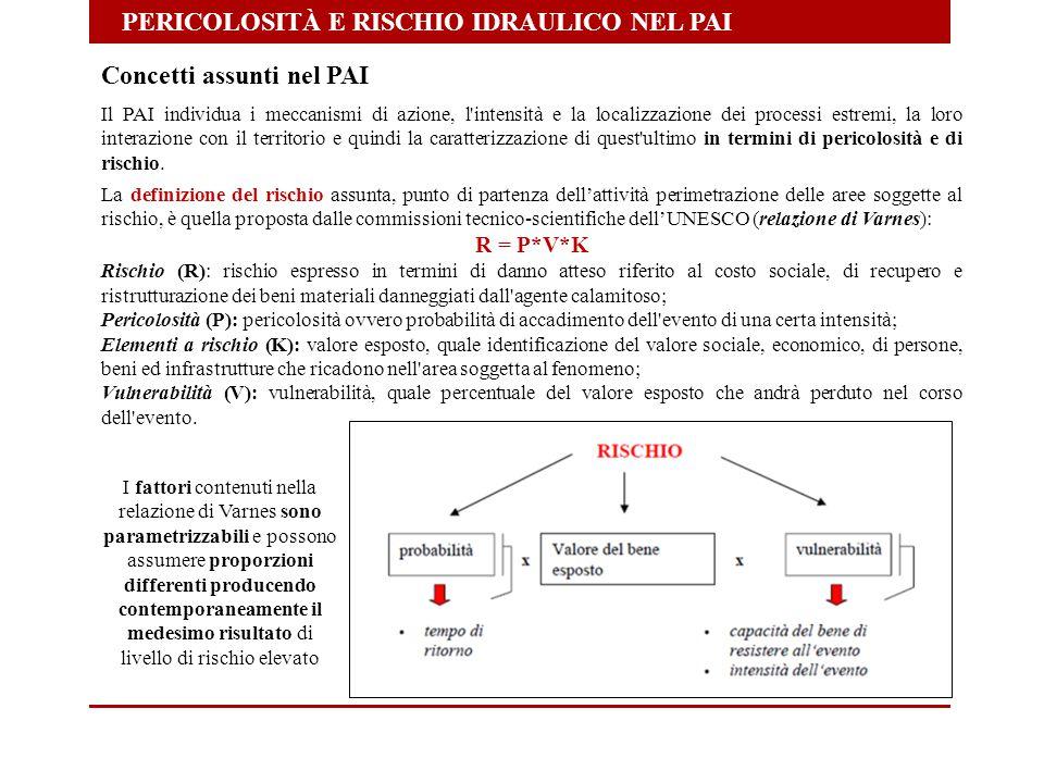PERICOLOSITÀ E RISCHIO IDRAULICO NEL PAI Concetti assunti nel PAI Il PAI individua i meccanismi di azione, l'intensità e la localizzazione dei process