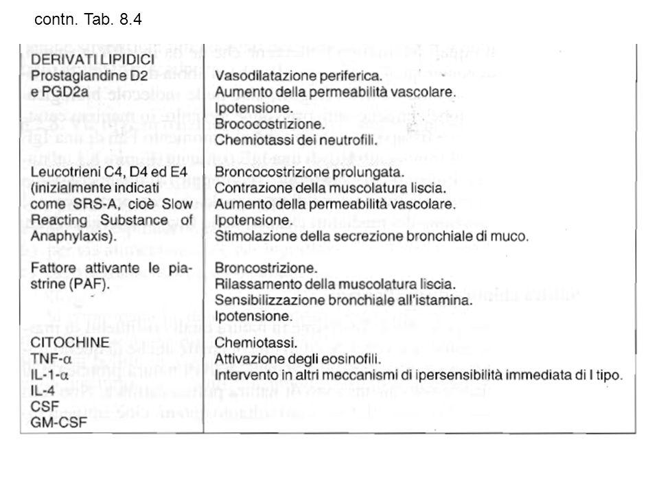 contn. Tab. 8.4