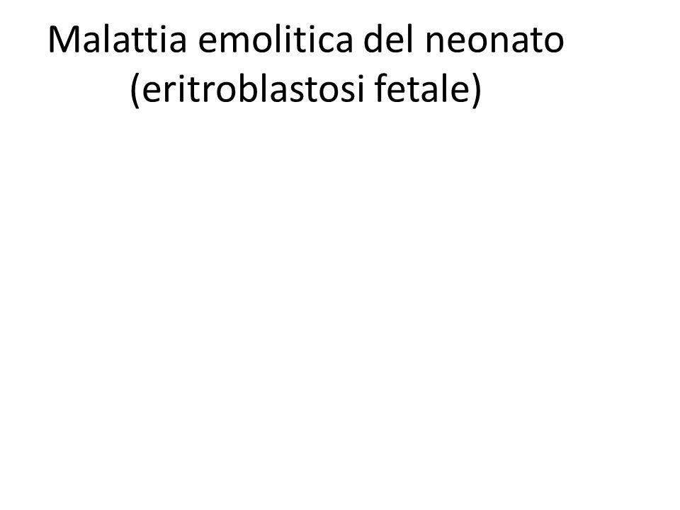 Malattia emolitica del neonato (eritroblastosi fetale)