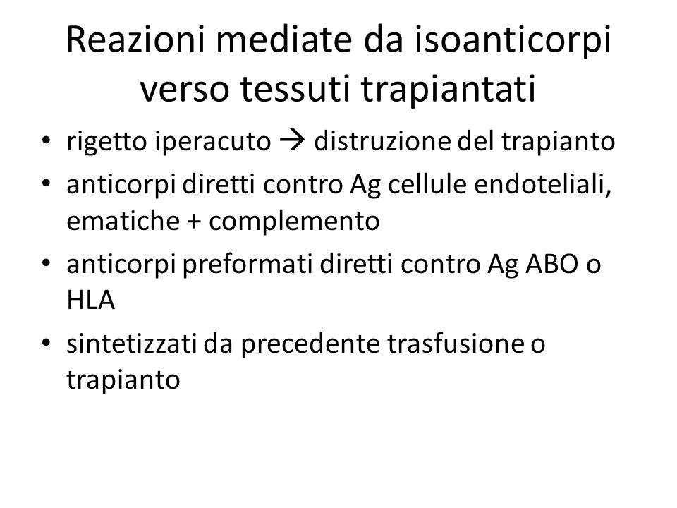 Reazioni mediate da isoanticorpi verso tessuti trapiantati rigetto iperacuto  distruzione del trapianto anticorpi diretti contro Ag cellule endoteliali, ematiche + complemento anticorpi preformati diretti contro Ag ABO o HLA sintetizzati da precedente trasfusione o trapianto
